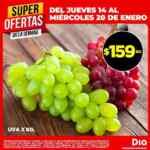 Ofertas DIA en frutas, verduras y carnes del jueves 14 al miércoles 20 de enero