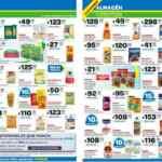 Folleto Carrefour Maxi del 15 al 21 de febrero 2021