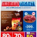 Folleto Carrefour Ahorro Gigante del 26 de mayo al 2 de junio